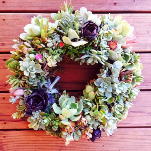 15 Inch Succulent Wreath